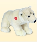 jouets Ours blanc